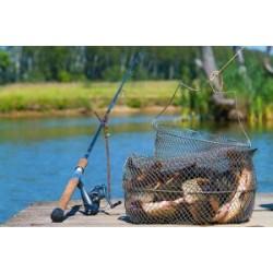Как хранить рыбу